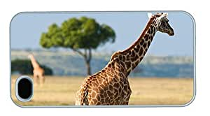 Hipster crazy iPhone 4 case Giraffe Africa PC White for Apple iPhone 4/4S