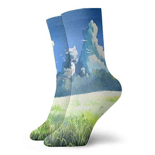 Crew Socks Miyazaki Wallpapers Athletic Socks Custom Personalized Anti Bacterial Odor Cushion Short Boot -