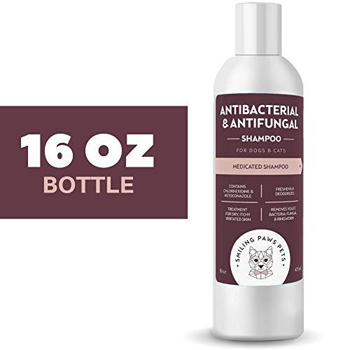 Antibacterial Antifungal Shampoo Dogs
