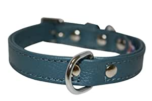"Leather Dog Collar, Padded, Double Ply, 12"" x 1/2"", Blue, 100% Genuine Leather (Alpine) Maltese, Shih Tzu"