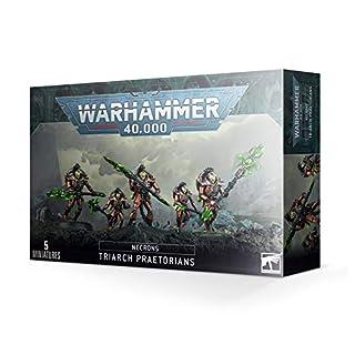 Warhammer 40K Necrons Triarch Praetorians