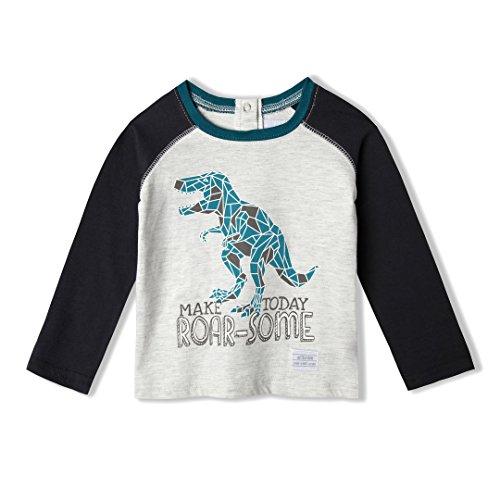 Organic Tee World Cotton (art & eden Baby Boy's 100% Organic Cotton Organic Dino Raglan T-Shirt 24mo)