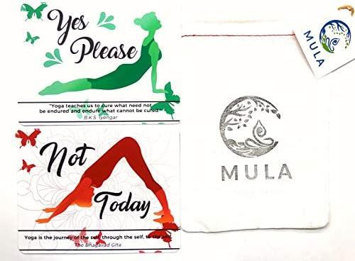 Amazon.com: Mula - Juego de 15 tarjetas de consentimiento ...