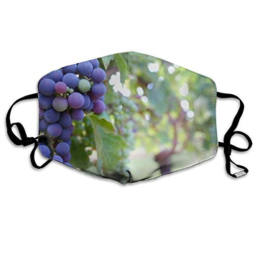 Whages Grape Fruit Washable Reusable Safety Breathable Mask, 4.3