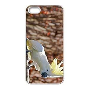 Parrot Hight Quality Plastic Case for Iphone 5s