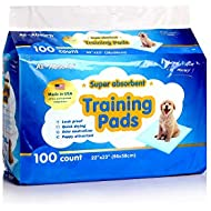 All-Absorb Training Pads 22-inch By 23-inch