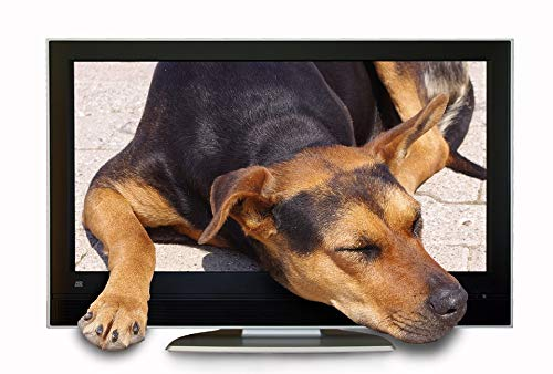 - Framed Art for Your Wall Dog Composing Screen Photo Montage Tv Hybrid Vivid Imagery 10 x 13 Frame
