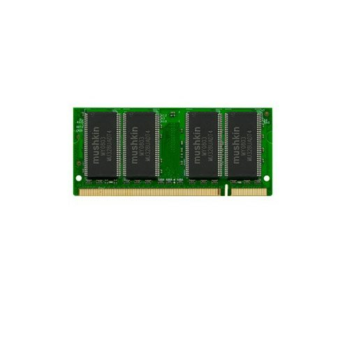 Mushkin Enhanced Essentials 1 GB Laptop Memory 991304 ()