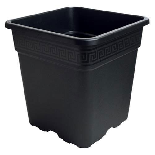 5 gallon black plastic pots - 7