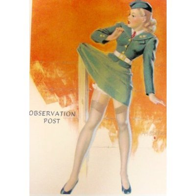 Pin-up Postcards: WWII Pinup Girls (Set of 30), used for sale  Delivered anywhere in USA