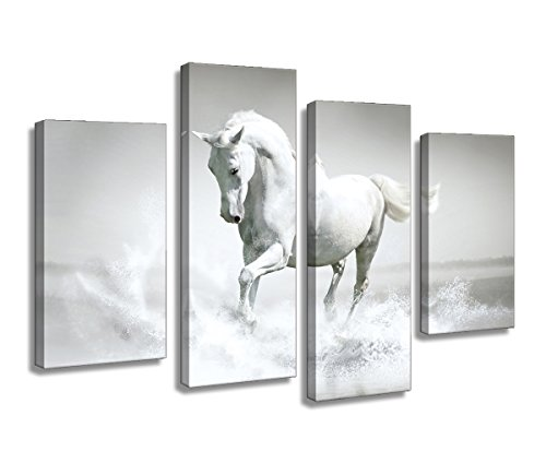 Amazon.com: Canvas Wall Art White Horse Painting Prints on Canvas ...