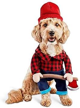 Bootique XS - Disfraz para Perro de Halloween con Sombrero de ...