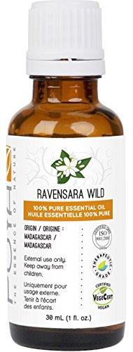 Ravensara Wild Essential Oil fl