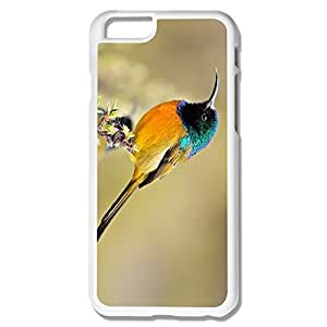 Durable Bird Pc Case For IPhone 6