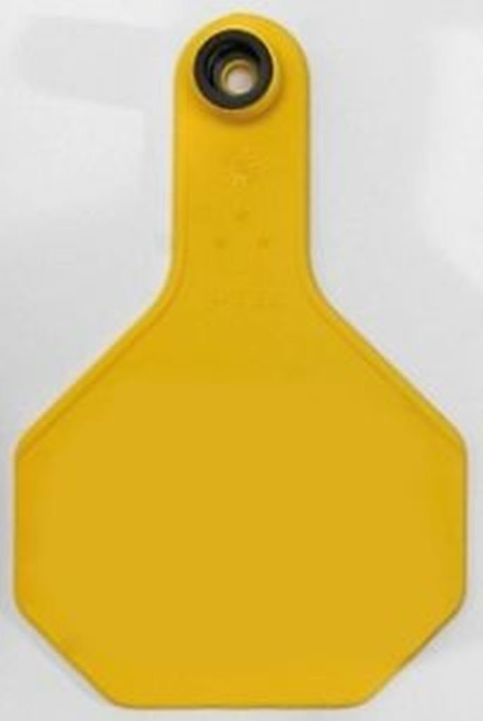 Y-TEX CORPORATION Medium Yellow Blank Tag (25 Pack) by Y-TEX CORPORATION