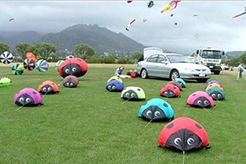 New To 3D High Quality 0.6m 40D Nylon Clothes Soft Kite Landscape Ladybug Kite/kite Festival New Colorful Kites, Adult Children, Breeze, Easy To Fly, Flying High-end Atmosphere, Kite (Navy Blue) ()