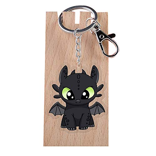 How to Train Your Dragon Acrylic Key Ring Metal Keychain with Clip