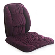 ALIBO Low Back Pain Relief Lumbar Support and Anti Slip Bottom Chair Cushions Nonslip Car Seat Pads Adjustable Strap Lumbar Pillow for Office,Dinning Room,Wicker,Lounge,Auto Car Seats,Sofa,Wheelchair