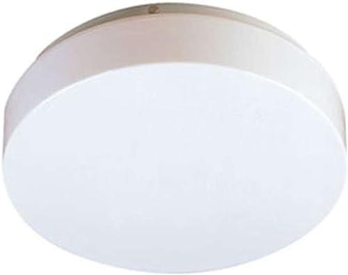 BX 54 – Circline round fluorescent ceiling fixture – 22 32 watt