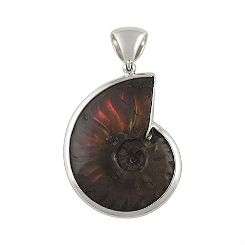 Ammonite Fossil Sterling Silver Pendant (Starborn Creations Sterling Silver Fossilized and Opalized Ammonite Pendant)