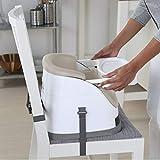 Ingenuity Baby Base 2-in-1 Seat - Slate - Booster