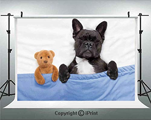 Animal Decor Photography Backdrops French Bulldog Sleeping with Teddy Bear in Cozy Bed Best Friends Fun Dreams Image,Birthday Party Background Customized Microfiber Photo Studio Props,7x5ft,Multi