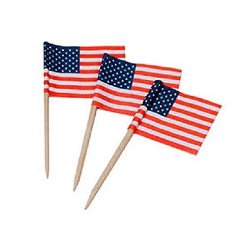 Darice 5300 99 100Piece Flag Toothpicks