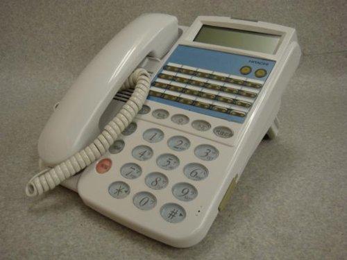 HI-24C-TELSD-N 日立 24ボタン標準電話機 ビジネスフォン   B00EPBX0KC