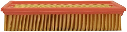 Luber-finer AF3978 Heavy Duty Air Filter by Luber-finer