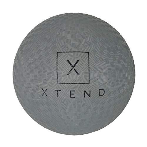 Xtend Barre Playground Ball