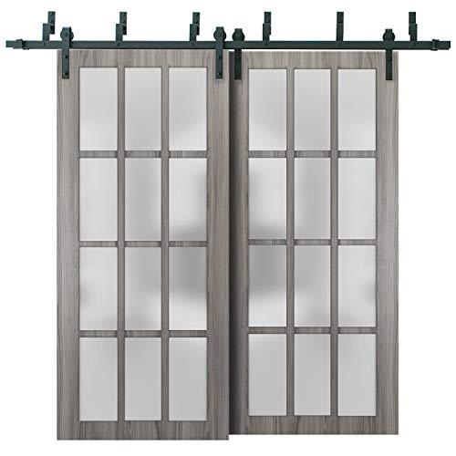 Sliding Closet Frosted Glass 12 Lites Barn Bypass Doors 64 x 80 inches | Felicia 3312 Ginger Ash Gray | Sturdy Top Mount…