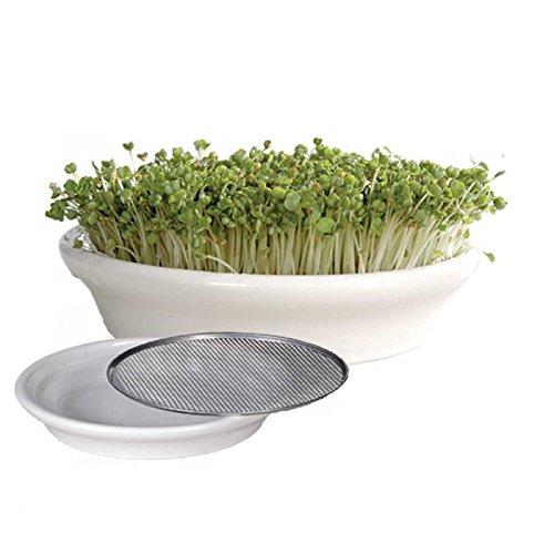 watercress-sieve-cress-strainer-seeds-germination-sprouter-846inch-215cm-white
