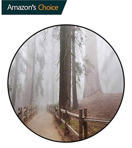 (RUGSMAT Yosemite Round Rug,Evergreen Forest and Walkway in Sequoia National Park Foggy Morning Nature Art Carpet Door Pad for Bedroom/Living Room/Balcony/Kitchen Mat,Round-51 Inch Grey Brown)