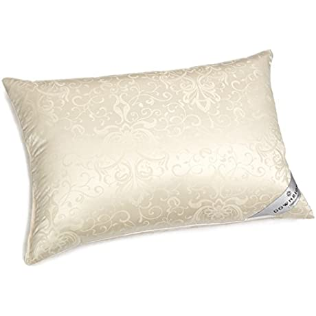 Downright 434 Thread Count 24 Oz Eliasa Silk Down Pillow 20 X 30