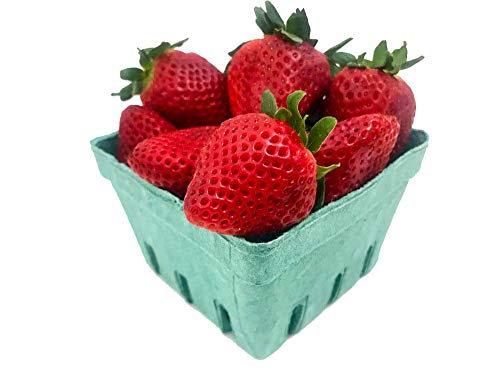 Pint Green Fiber Fruit/Berry Basket Container (25 Pack) for Strawberry Blueberries Tomatoes and Produce