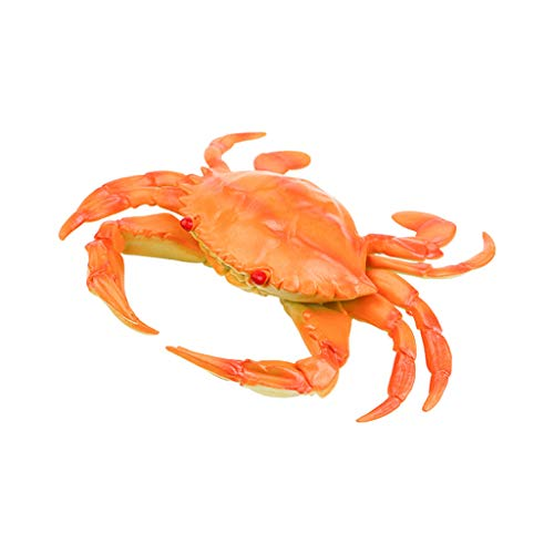 Ktyssp Lifelike Crab Kids Pretend Play Toy Simulated Marine Creatures Collection ()