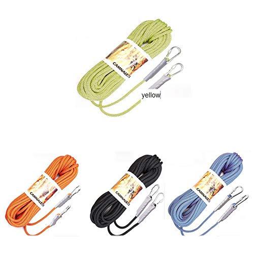 動物賛美歌漏斗アブセイリングロープアウトドアセーフティプロフェッショナルロッククライミングロープコードキャビネットラビングサバイバル補助コードクライミング機器ナイロンロープ (色 : ブラック, サイズ : Diameter 10.5mm/10M)