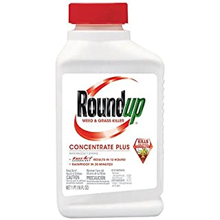 Roundup Weed and Grass Concentrate Plus Killer (Case of 12), 16 oz