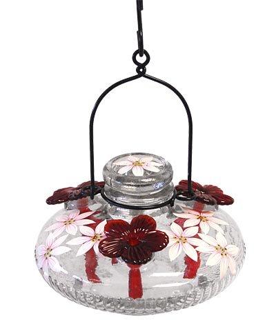 - PARASOL Clear Bloom Botanica Hummingbird Feeder, 16 oz.
