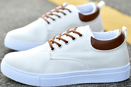 SATUKI Canvas Shoes For Men,Lace Up Soft Casual Athletic Lightweight Sports Fashion Sneakers White
