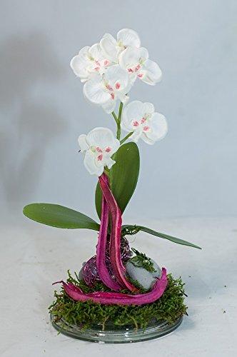 Weisse Orchideen Pflanze Auf Einem Glasteller Tischgesteck Tischdeko