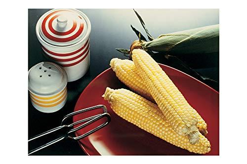 David's Garden Seeds Corn Sugar Enhanced Sugar Buns 8661 (Yellow) 100 Non-GMO, Hybrid Seeds ()