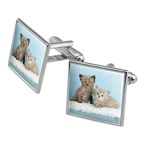 - Graphics and More Ragdoll and Tiffany Kitten Cat Friends Square Cufflink Set Silver Color