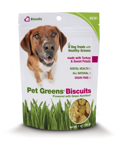 Pet Greens Treats Turkey and Sweet Potato Dog Biscuits, My Pet Supplies