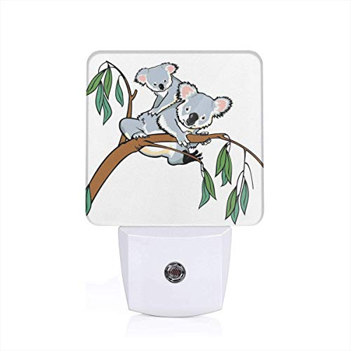 Colorful Plug in Night,Mother and Baby Koala