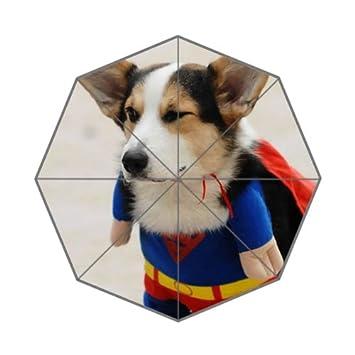 Bonito paraguas plegable Kawaii Corgi, para perro, cachorro, único, duradero y personalizado