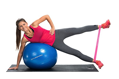 Fitness Equipment Ideas. DYNAPRO Exercise Ball - 2,000 lbs Stability Ball - Professional Grade – Anti Burst Exercise Equipment for Home, Balance, Gym, Core Strength, Yoga, Fitness, Desk Chairs (Pink, 65 Centimeters)