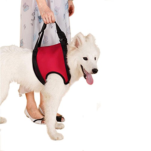 Lalawow Dogs Front Lift Harness Dogs Lift Support Rehabilitation Harness Helping Support for Elderly or Arthritis Dogs (L - chest 74cm/29.13inch, Front Leg) (Up And Out Lift Harness compare prices)