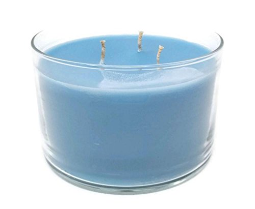 Partylite Long-burning Scented Jar Candle, (Blue Agave), 32 OZ Three-Wick Glass Jar, by