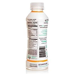detoxwater™ Bioactive Aloe Water Mangaloe Mango 16 Fluid Ounces, Pack of 6